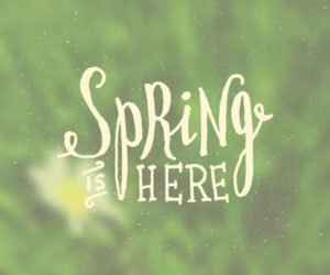 Get Your Store Ready For Spring